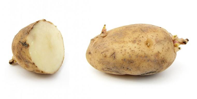 Kan je de uitlopers van een aardappel opeten? 2