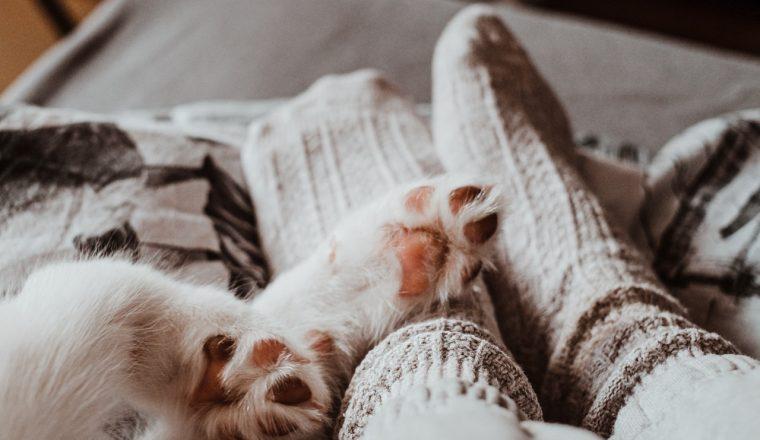 vrouwen koude voeten